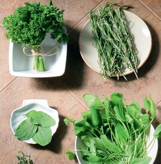 Сбор лекарственного сырья: Листья