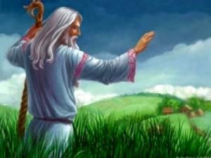 С давних пор на Руси волхвы, ведуны и знахари лечили людей травами